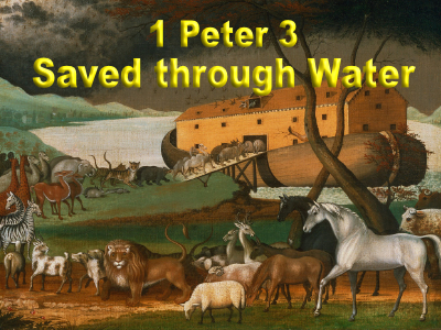 The Flood wiped away all the sin in the world. Baptism does the same thing.